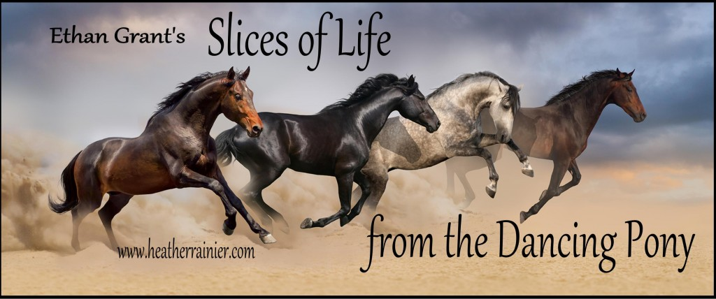 Ethan Grant's Slices of Life Banner