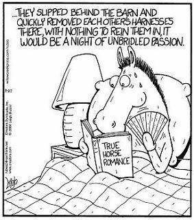 2011 Horse Porn